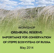 """Workshop """"Orenburg Reserve: importance for conservation of steppe ecosystems of Russia and perspectives for development"""""""