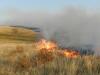 Степной пожар в Оренбургском заповеднике, август 2014 г. Фото предоставлено О. Баранниковой