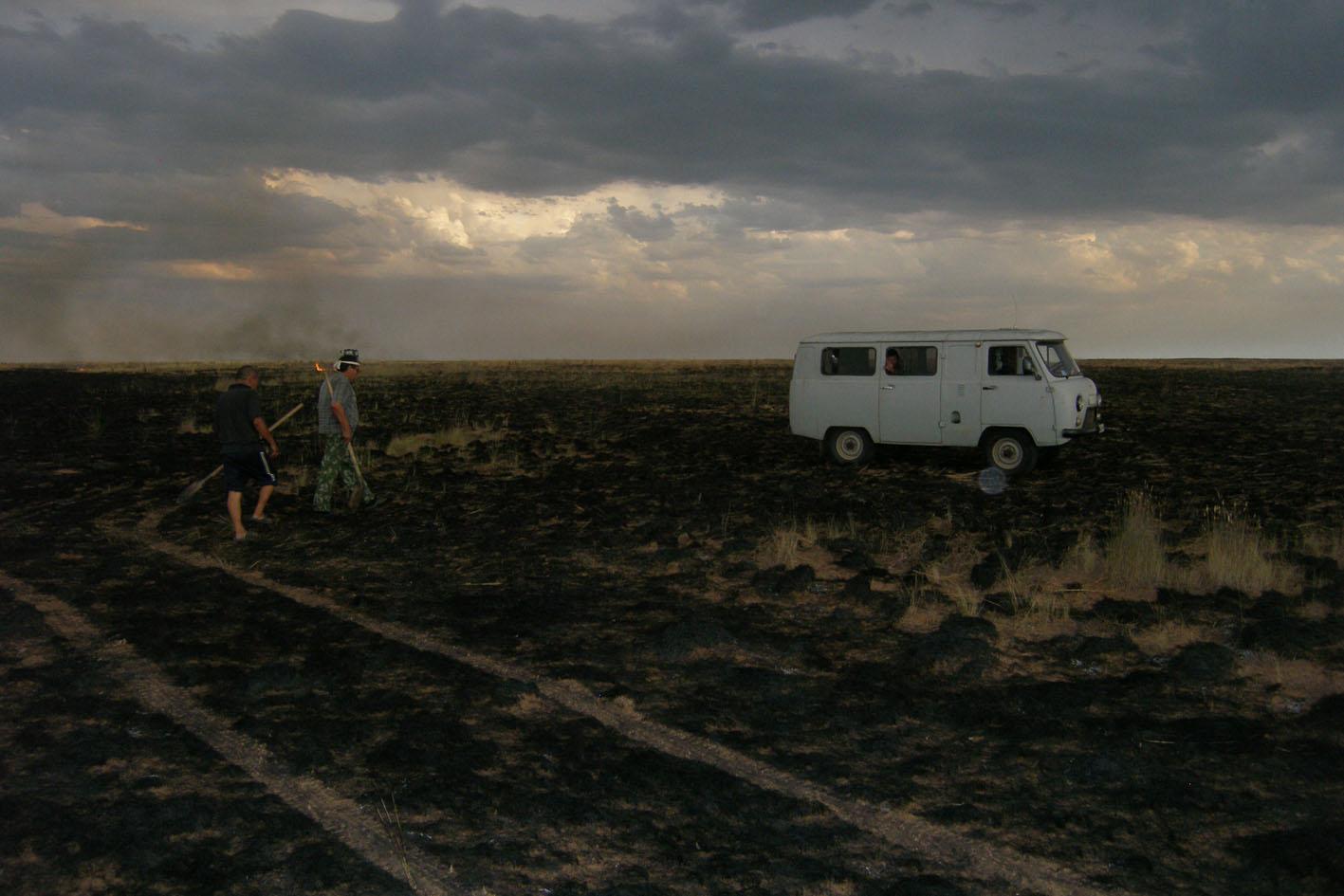"""После степного пожара. Заповедник """"Черные Земли"""", Калмыкия. 28 июля 2010"""