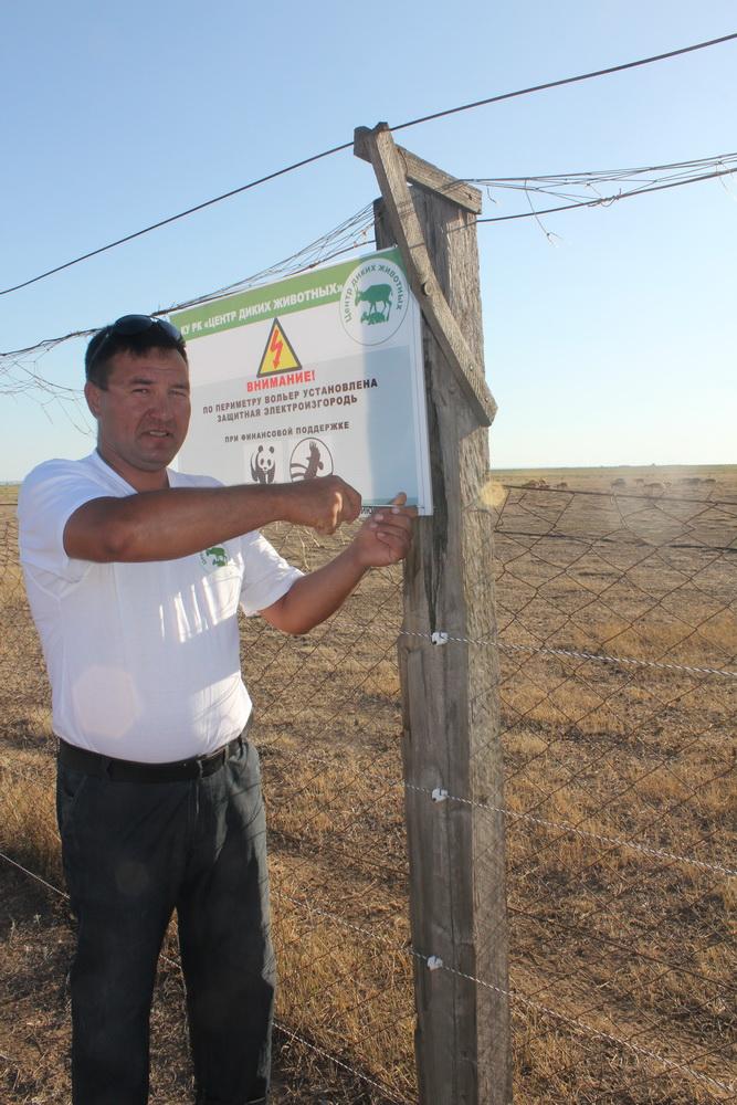 Установка информационной таблички на электроизгородь. Питомник для сайгаков. Республика Калмыкия