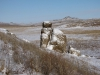 Адон-Челон - мелкосопочный массив с останцами - важное место обитания манула в Забайкалье, Даурский заповедник. Фото А.Н. Барашковой