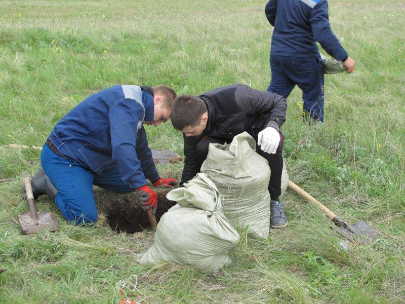 Отбор подземной фитомассы на стационарных мониторинговых участках (май 2016 года), Оренбургский заповедник. Фото предоставлено Оренбургским заповедником