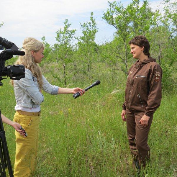Интервью с директором Оренбургского заповедника Рафилей Бакировой во время оснащения ЛЭП птицезащитными устройствами, Оренбургская область. Фото Максима Ивлиева