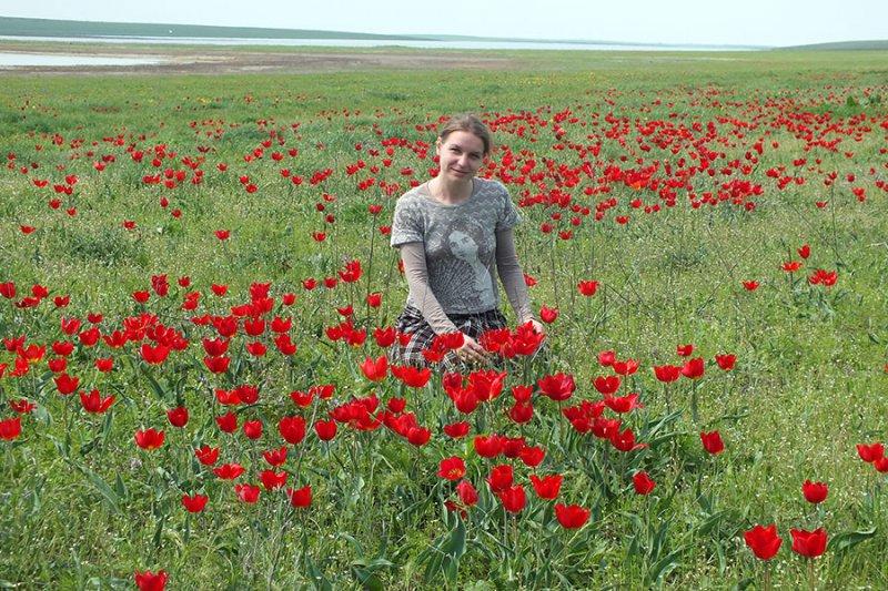 Среди диких тюльпанов, Ростовский заповедник. Фото предоставлено Н.Н. Лебедевой