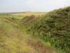 Ковыль перистый на склонах оврага. Орловская область