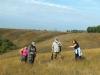 В ковыльно-разнотравной степи на участке Быкова Шея, Заповедник Галичья гора, Липецкая область. Фото Н.Н. Лебедевой