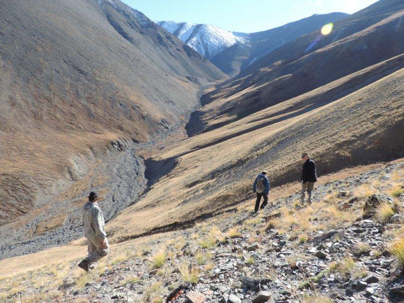 Полевой выезд в Сайлюгемский национальный парк, 16-23 сентября 2016 г. Фото А.Н. Барашковой