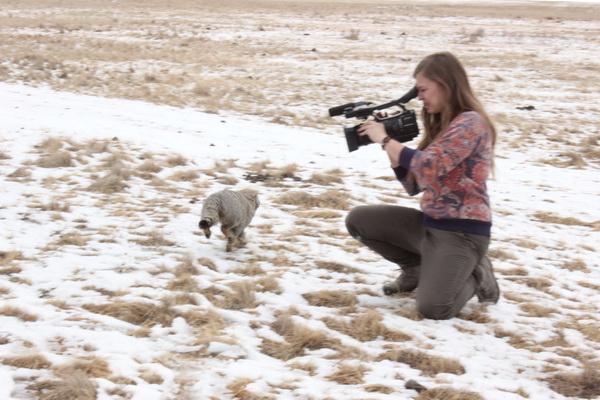 Мордашка храбро пробежала рядом с камерой