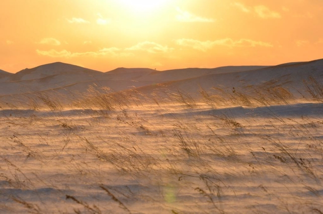 Заказник «Горная степь», Забайкальский край, март 2017 г. Фото предоставлено Сохондинским заповедником