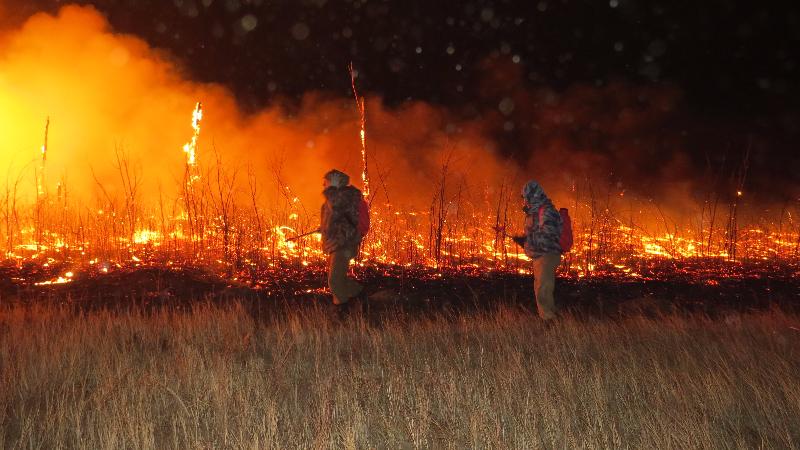 Степной пожар в окрестностях Даурского заповедника, 18 апреля 2015 г., Забайкальский край. Фото Д. Жаргалова