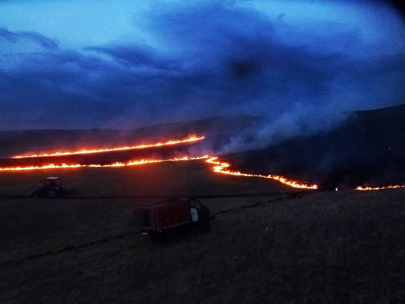 Степной пожар на участке «Озеро Иткуль»
