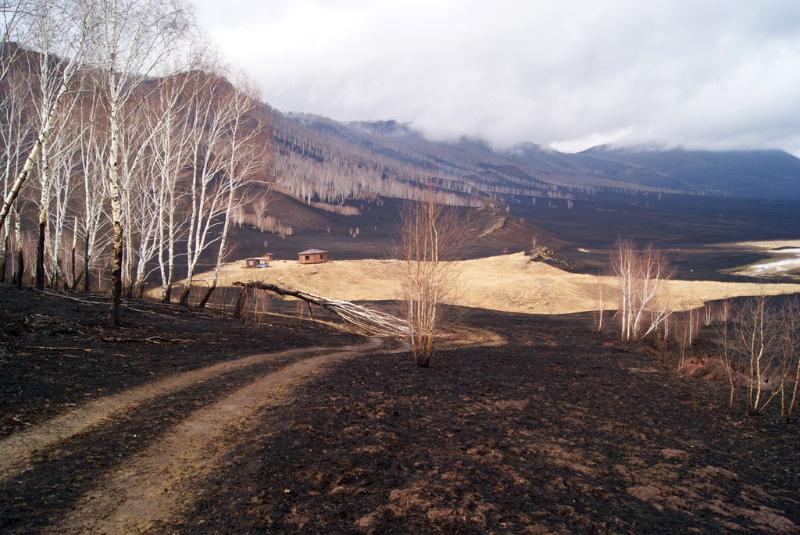 Последствия степного пожара 12 апреля  2015 года в Республике Хакасия. Фото с сайта Хакасского заповедника
