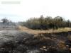 Последствия пожара 21 июня 2014 года © Богдинско-Баскунчакский заповедник