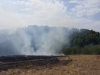 Пожар в Кувандыкском районе Оренбургской области, август 2015 г. Фото Р. Бакировой