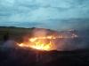 Пожар в Айтуарской степи, сентябрь 2015 г. Фото Р. Бакировой