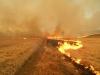 Степной пожар в заказнике «Горная степь», Забайкальский край, апрель 2015 г. Фото с сайта Сохондинского заповедника