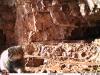 Манул, снят фотоловушкой на хребте Сайлюгем. Фото предоставлено Сибэкоцентром