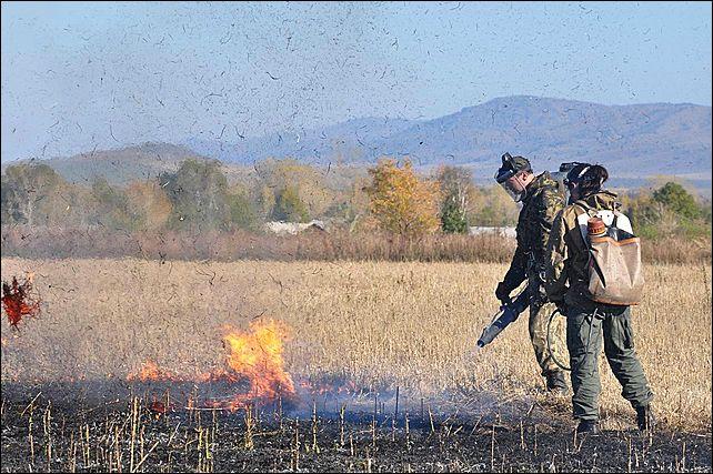 Тушение степного пала. Сентябрь 2011. Алтайский край