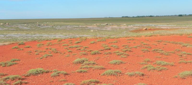 Пустынный ландшафт озера Большой Тассор © http://altaipriroda.ru/