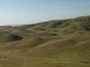 Холмы, покрытые ксерофитной (сухой) ковыльной степью. Оренбургская область. Июнь 2010. Фото И.Э. Смелянского.