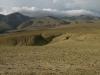 Сильно стравленная сухая (ксерофитная) горная степь на Курайском хребте. Республика Алтай, июль 2009. Фото И.Э. Смелянского