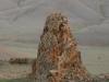 Скалы – типичный элемент ландшафта в сухой (ксерофитной) горной степи на хребте Сайлюгем. Республика Алтай, июль 2009. Фото И.Э. Смелянского