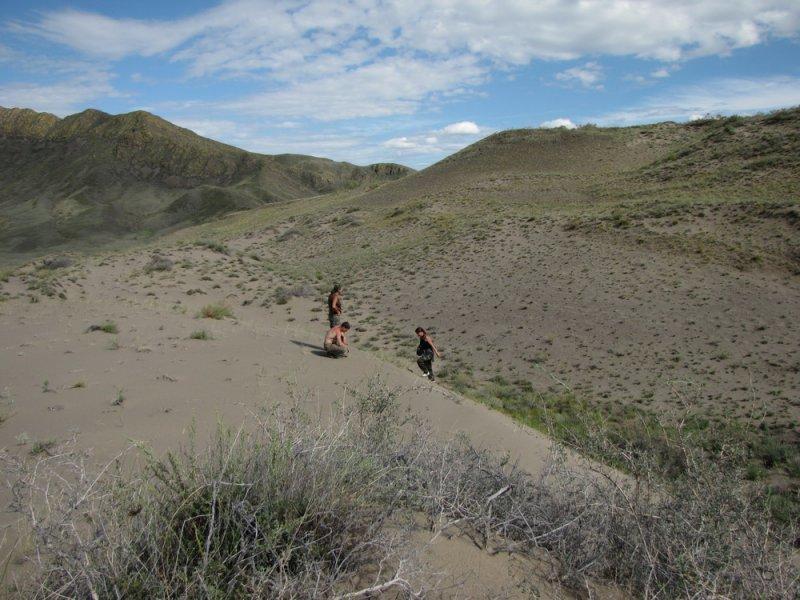 Песчаные массивы - одно из мест обитания манула в Туве. Фото А.Н. Барашковой