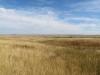 Памятник природы «Урочище Мулин Дол»: Сухая полынково-дерновиннозлаково-ковылковая степь и настоящая разнотравно-дерновиннозлаково-ковыльная степь с бобовником в верховьях Фитальского дола. К концу лета степной травостой уже давно высох, большинство растений отцвело. Самарская область