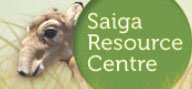 Saiga Resource Center