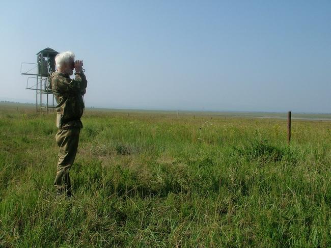 Учеты дзерена. Август 2013. Сохондинский заповедник © http://sokhondo.ru/