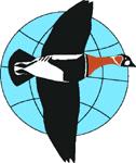 Международная орнитологическая конференция Северной Евразии
