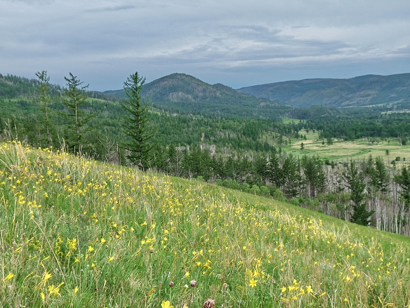 Истоки Амура © http://www.sokhondo.ru