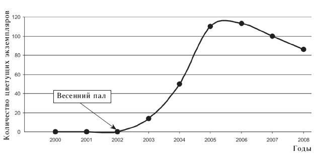 Влияние весеннего пала на количество цветущих экземпляров тюльпана Биберштейна в ПриокскоТеррасном заповеднике