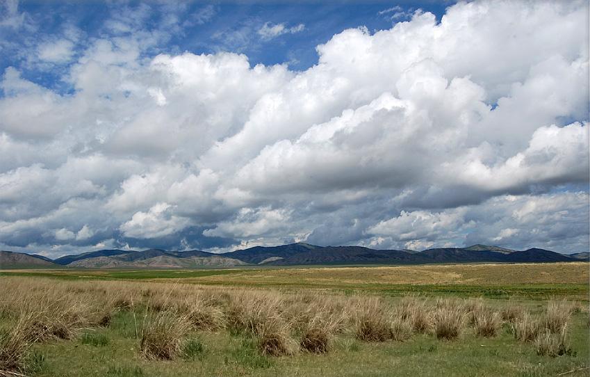 Камызякская степь, Республика Хакасия. Фото Б. Налобина