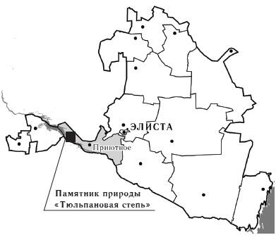 Памятник природы регионального значения «Тюльпановая степь»