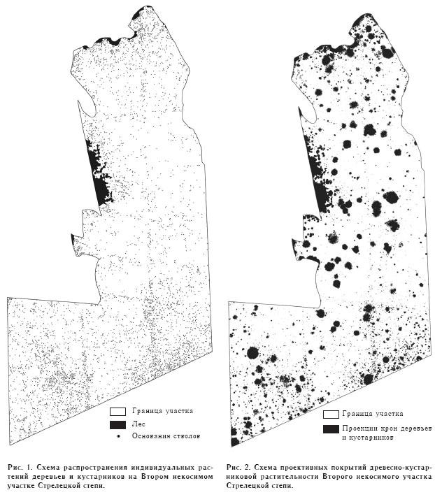Картирование древесно-кустарниковой растительности в Стрелецкой степи
